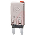 ETA 25A 1 Pole Automotive Thermal Circuit Breaker, 32V dc