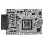 Microchip PG164100