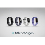 FitBit Charge 3 FB409RGGY-EU - Blue Grey