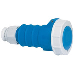 Bals IP67 Blue Cable Mount 2P+E Industrial Power Socket, Rated At 32.0A, 230.0 V