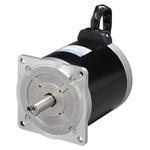 Sanyo Denki Stepper Motor, 100 V, 12mm Shaft Diameter