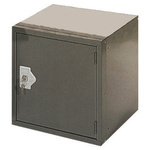 RS PRO 1 Door Grey Locker, 305 mm x 305 mm x 305mm