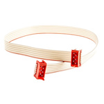TE Connectivity Flat Ribbon Cable 250mm, IDC to IDC, 6 Ways, Cable assembly