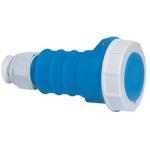 Bals IP67 Blue Cable Mount 2P+E Industrial Power Socket, Rated At 16.0A, 230.0 V