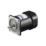 DKM Reversible Induction AC Motor, 60 W, 1 Phase, 4 Pole, 220 V, 240 V