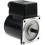 DKM Reversible Induction AC Motor, 25 W, 3 Phase, 4 Pole, 220 V