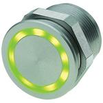 Illuminated Flexible Wire Piezo Switch, , IP67, IP69K, 100 mA, Free Polarity, -40 → +85°C