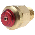 Reliance 16bar Anti-Vacuum Valve with Male BSP 1/2 in BSP Male Connection