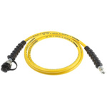 Hose Assembly with Threaded Connection, length 3m, 700 bar