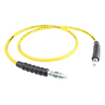 Hose Assembly with Threaded Connection, length 1.8m, 700 bar