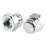 G 1/4 Steel Hydraulic Blanking Cap, 450 bar Max Operating Pressure