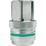 CEJN Brass Process Fitting 3/8in Straight Coupler 3/8BSP